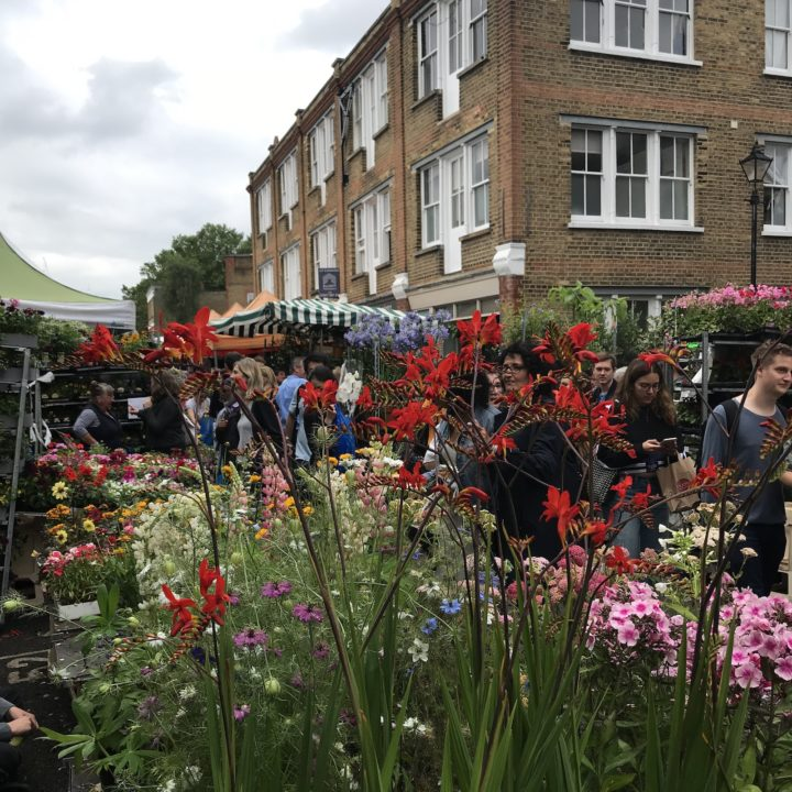View of flower stalls in Columbia Road